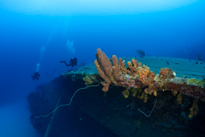 Diving the Hilma Hooker